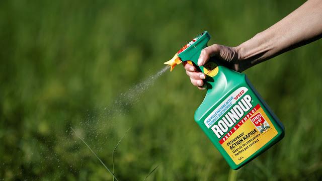 Ordenan a Monsanto a pagar 2.000 millones de dólares en un nuevo juicio por el herbicida Roundup