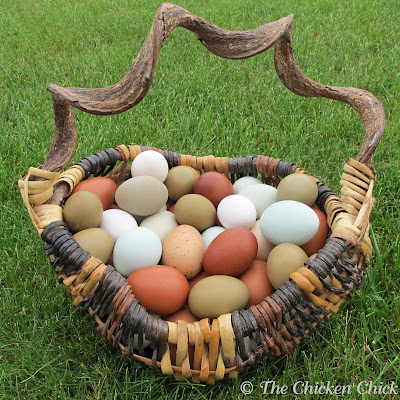 How to blow out egg shells by a variety of methods