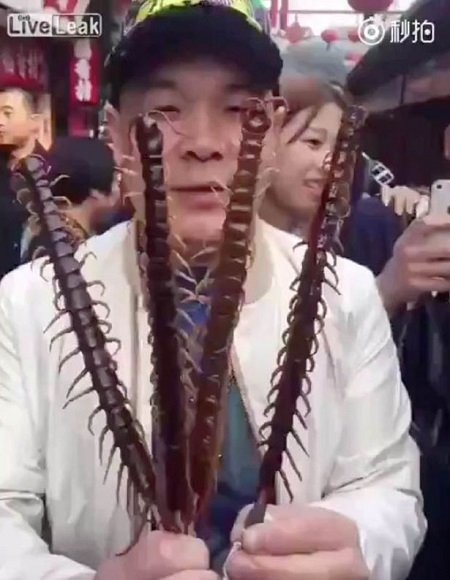 Impossible! Watch As Chinese Man Eats Huge Centipede Straight Off a Skewer in Crowded Market (Video)