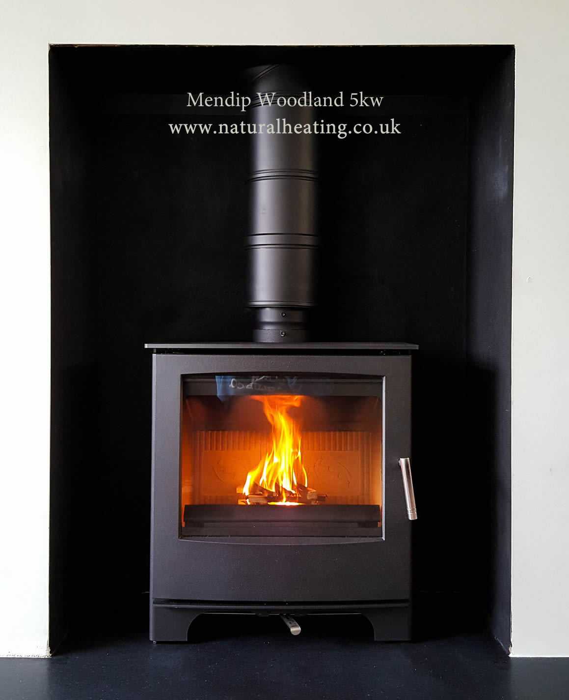 Wood Burning Multi Fuel Stoves