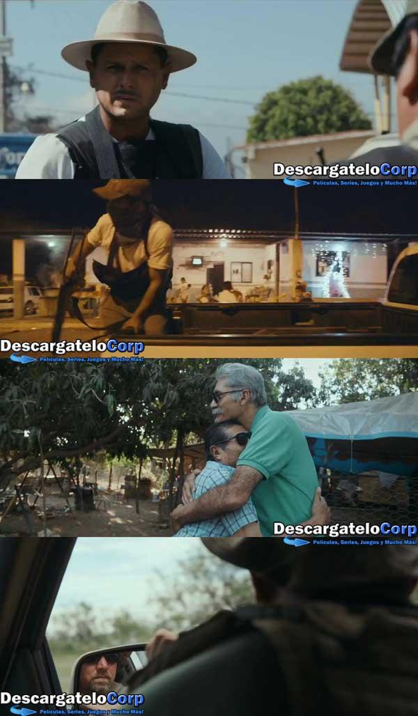 Tierra de Carteles HD 720p Latino
