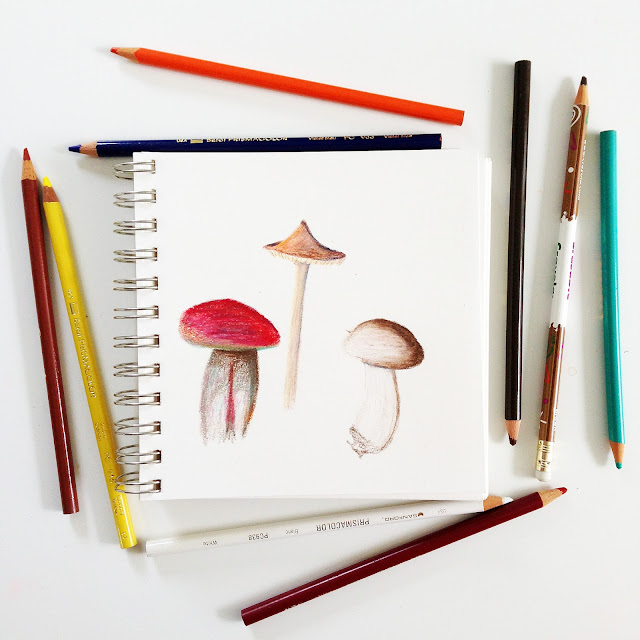 sketchbook, colored pencil, mushrooms, drawing, sketching, mushroom sketches, Anne Butera, My Giant Strawberry