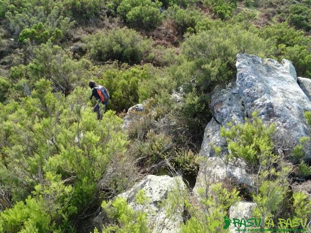 Dolmen de Merillés: Bajando del Alto de Reigada