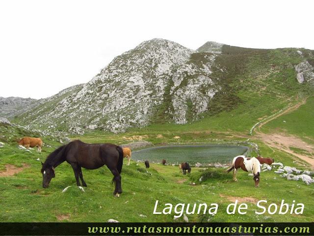 Laguna de Sobia en Teverga