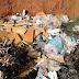 DENÚNCIA : Crime ambiental em São Chico...