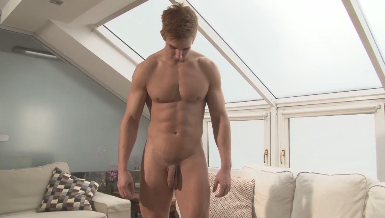 Andrew gay
