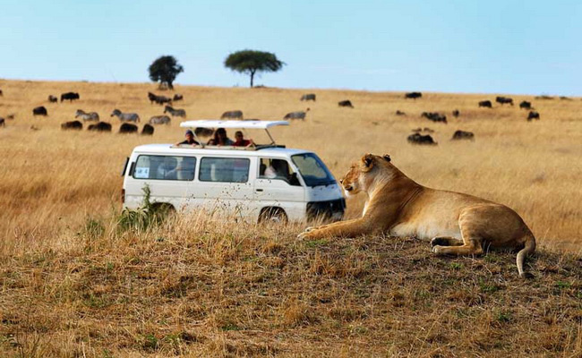 Xvlor.com Tsavo National Parks is one of the largest conservation in the world