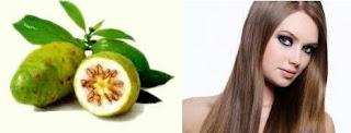 Rambut merupakan mahkota perempuan yang sangat penting Manfaat Buah Mengkudu untuk Rambut
