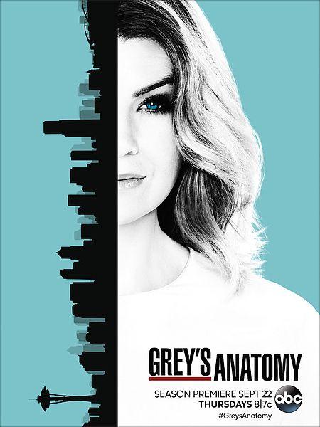 Baixar  Grey's Anatomy 13ª Temporada Dublado e Legendado