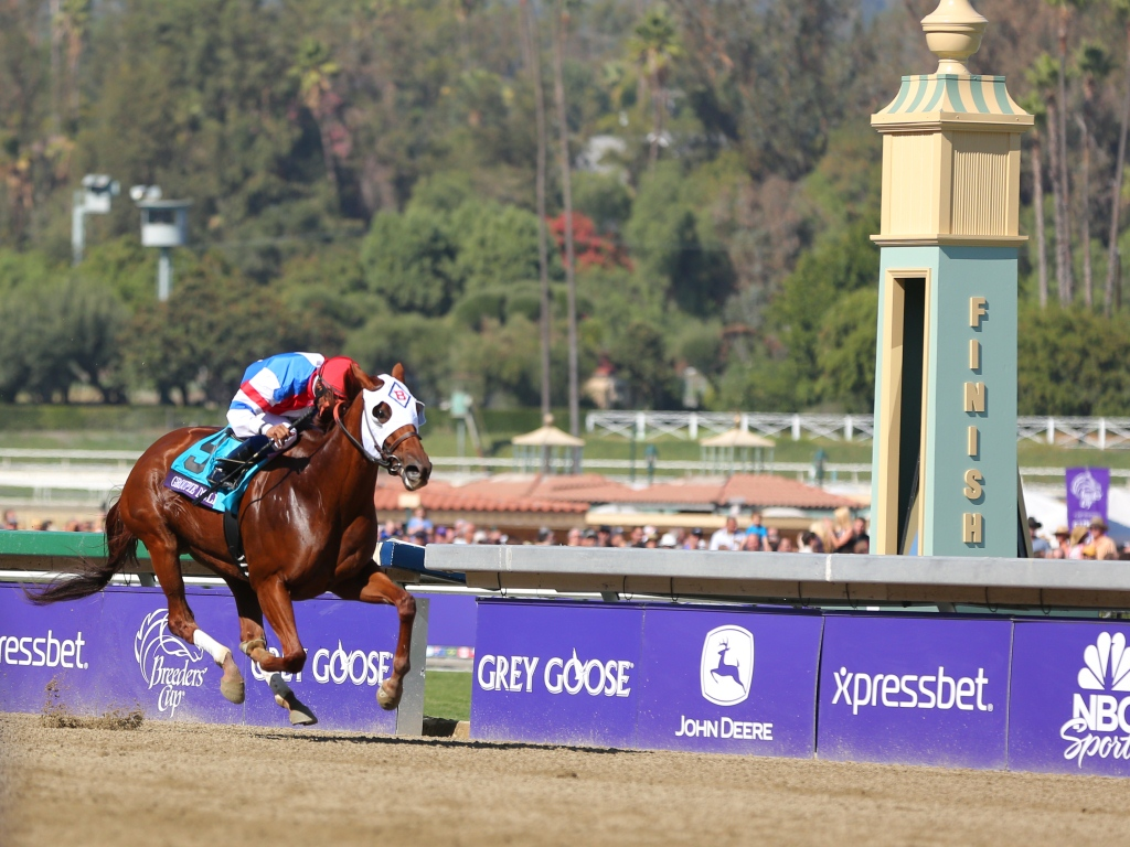 Past The Grandstand Breeders Cup 2012 Saturday