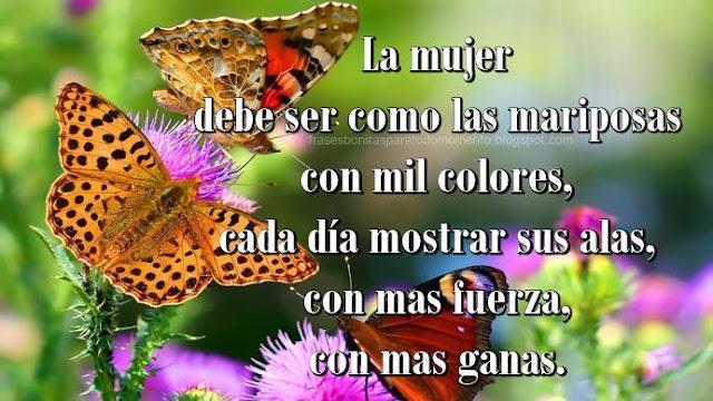 La mujer debe ser como las mariposas con mil colores, cada día mostrar sus alas, con mas fuerza, con mas ganas.