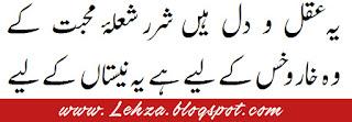 Ye Akal-o-Dil Hai Sharar Shola-e-Mohabbat Ke  Wo Khaar-o-Khas Ke Liye Hai, Ye Nestaan Ke Liye