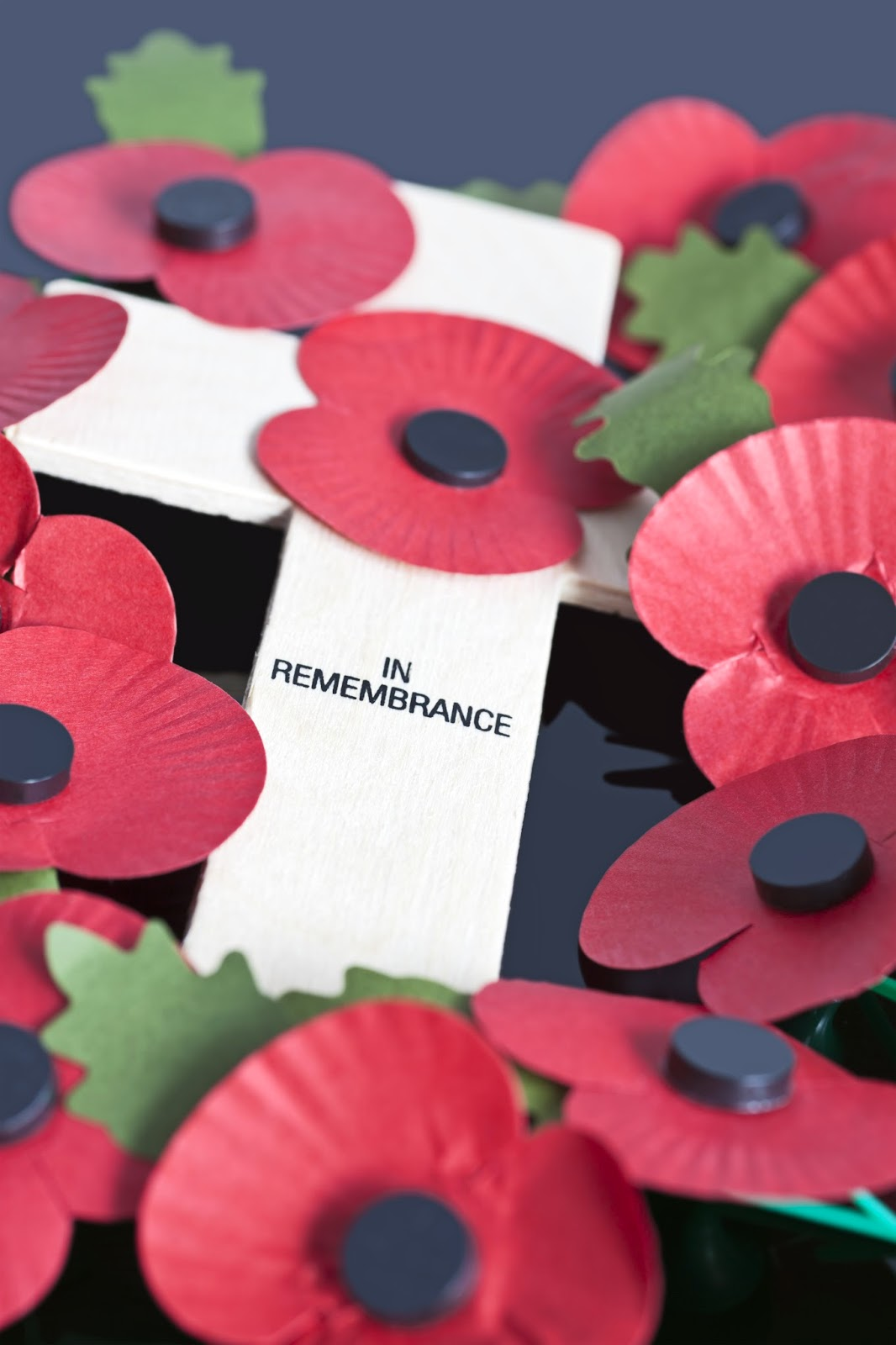 Pencil Street Free Remembrance Day Teaching Resources