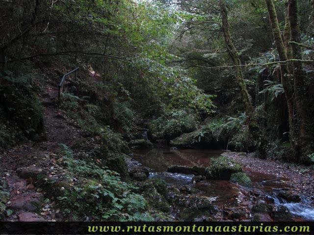 Ruta de los Molinos del Rio Profundo: Sendero y río