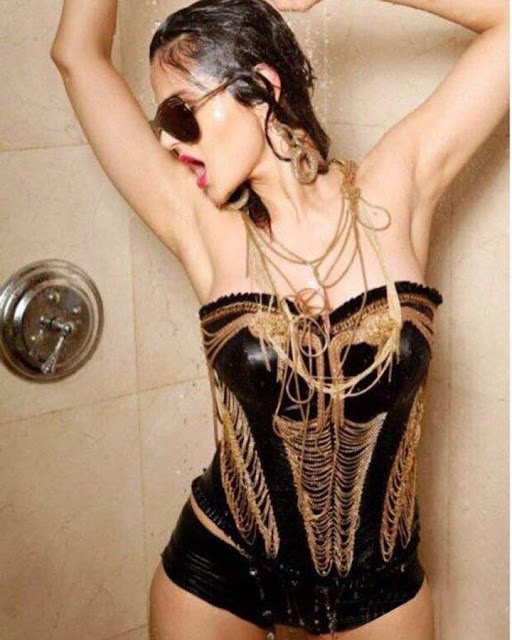 Actress Ameesha Patel Sexy in Lingerie Images