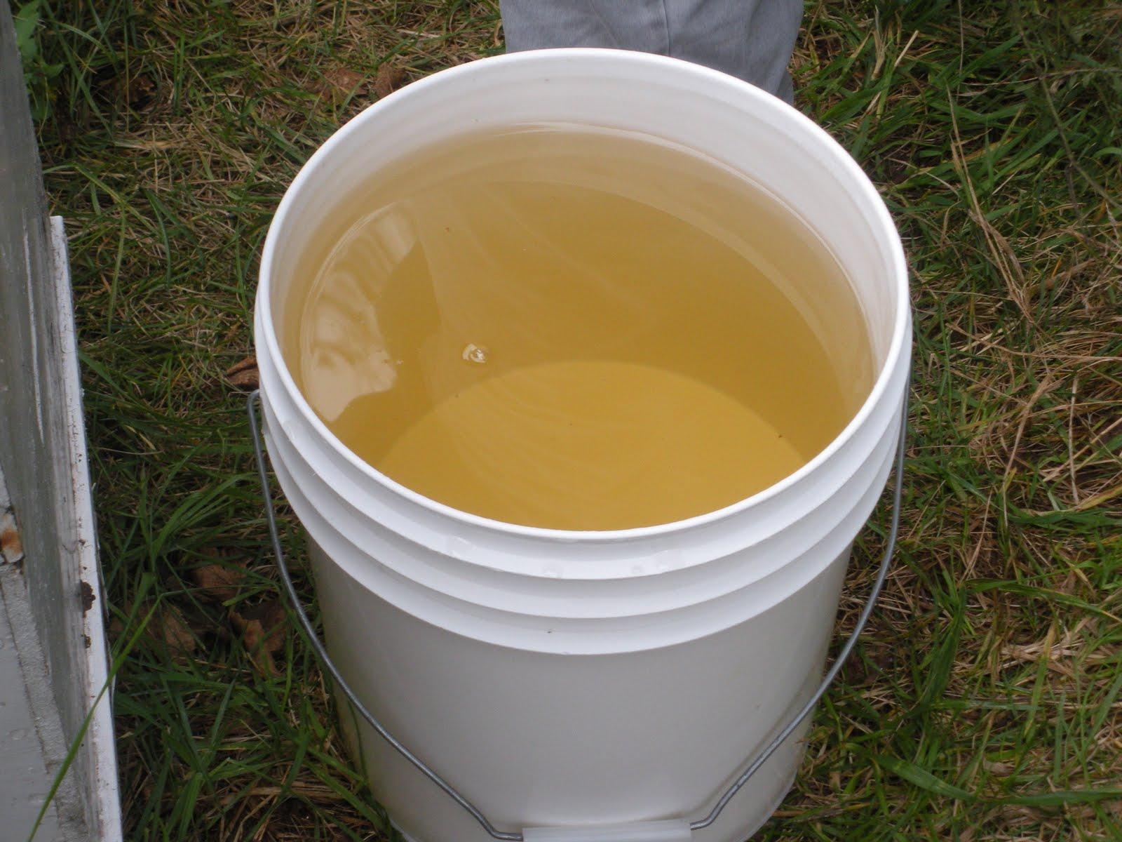 Honey Bee Feeder Design http://sewkaren-lycreated.blogspot ...