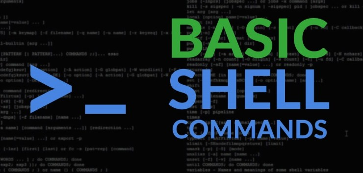 Shell command to bulk change file extensions in a directory