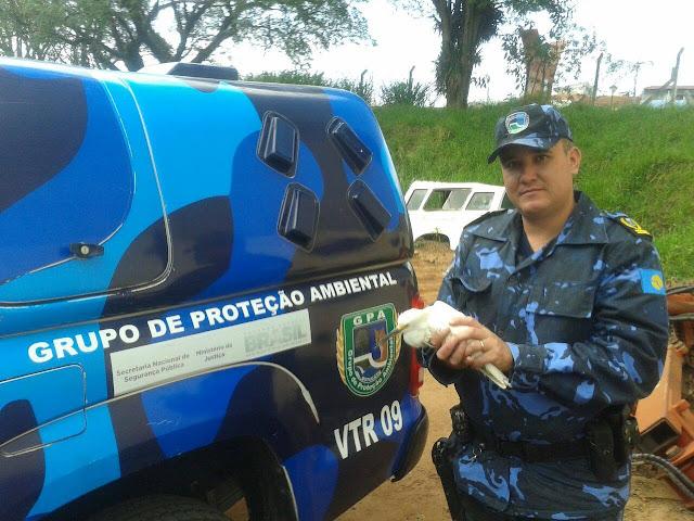 Guarda Civil Ambiental de Botucatu resgata filhote de garça no Lavapés