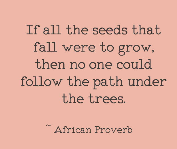 If all the seeds that fall were to grow, then no one could follow the path under the trees. ~ African Proverb