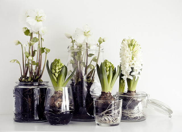 Achados de Decoração, blog de decoração, quitinetes, kitnets, apartamento decorado, loja de objetos de decoração online