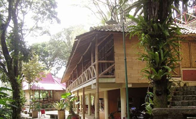 bamboo style house 26