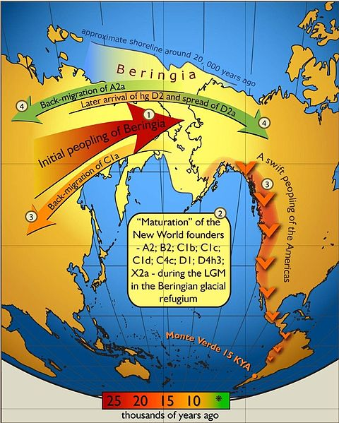 X2a mtDNA - Ojibwe Origins in North America: 2016