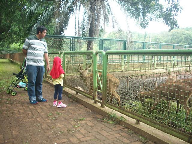 Masuk Taman Margasatwa Ragunan Melalui Pintu Masuk Sebelah Timur di Kebagusan