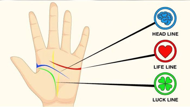 Wanita yang Mempunyai Garis Tangan Seperti Ini, Susah Hamil Menurut Para Ahli