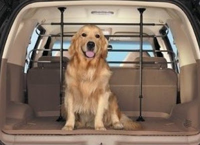 Top 7 Ways to Pet Proof Your Car
