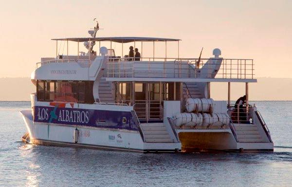 Paseos en catamarán por la bahía de La Habana