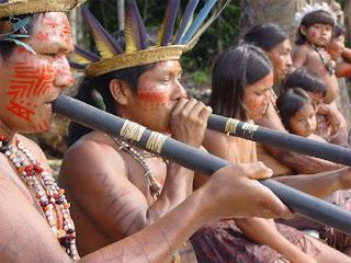 graviola i indijanci
