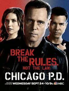 Chicago PD – 2X07 temporada 2 capitulo 07