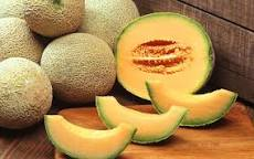 موسوعة الفاكهة حقائق غذائية  فاكهة الشمام   nutrition facts Melon cantaloupe