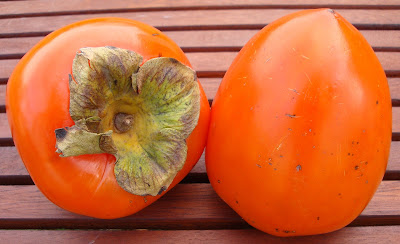 What is persimmon fruit?
