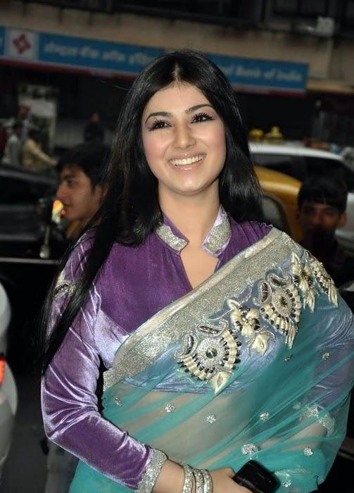 All Stars Photo Site Ayesha Takia In Transparent Saree -3729