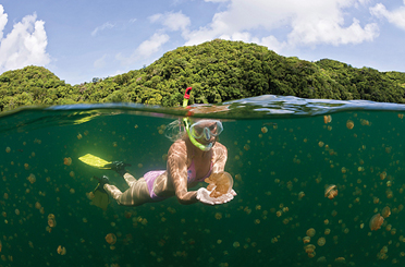 Destination EcoTourist - Palau - A True Tropical Island ... |Palau Vacation