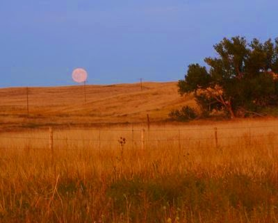 Full corn' moon rising over eastern Wyoming, western Nebraska, early September 2009. Photo © Kitchen Parade All Rights Reserved.