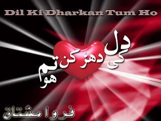 Dil Ki Dhadkan Ho Tum Episode 14 By Farwa Mushtaq