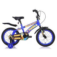 Sepeda Anak United Power Junior 16 Inci