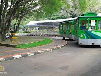 7 Tempat Wisata di Bogor Paling Mempesona yang Wajib Dikunjungi