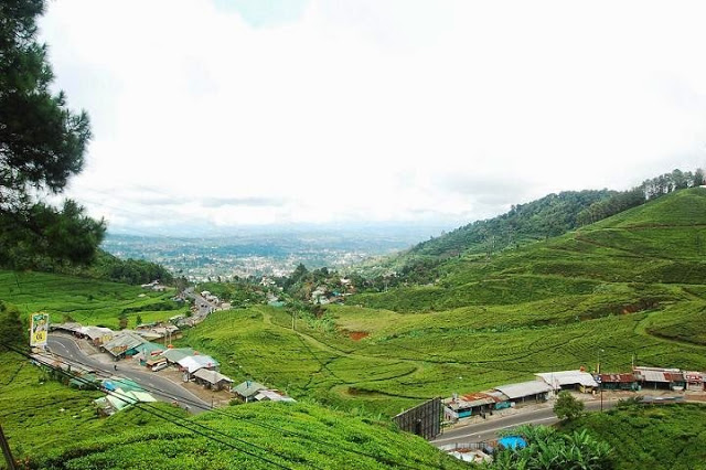 Tempat Wisata di Daerah Puncak Bogor Yang Terkenal