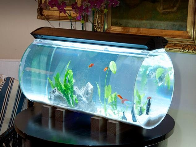 15 coolest fish bowls and awesome aquarium designs part 3. Black Bedroom Furniture Sets. Home Design Ideas