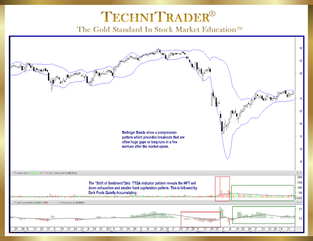 chart example with volume and quantity indicator windows - technitrader
