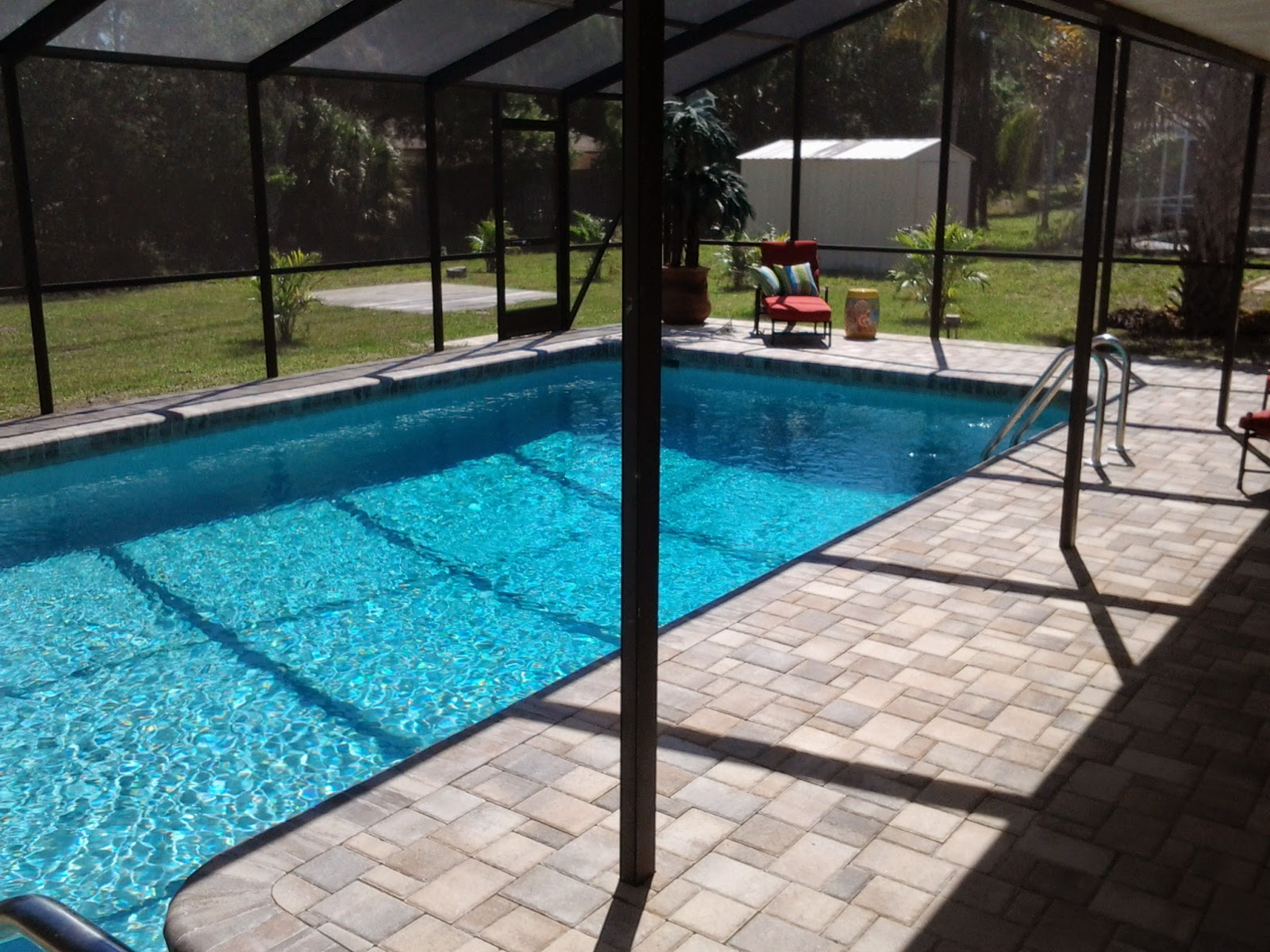 Renovated pool in Venice FL