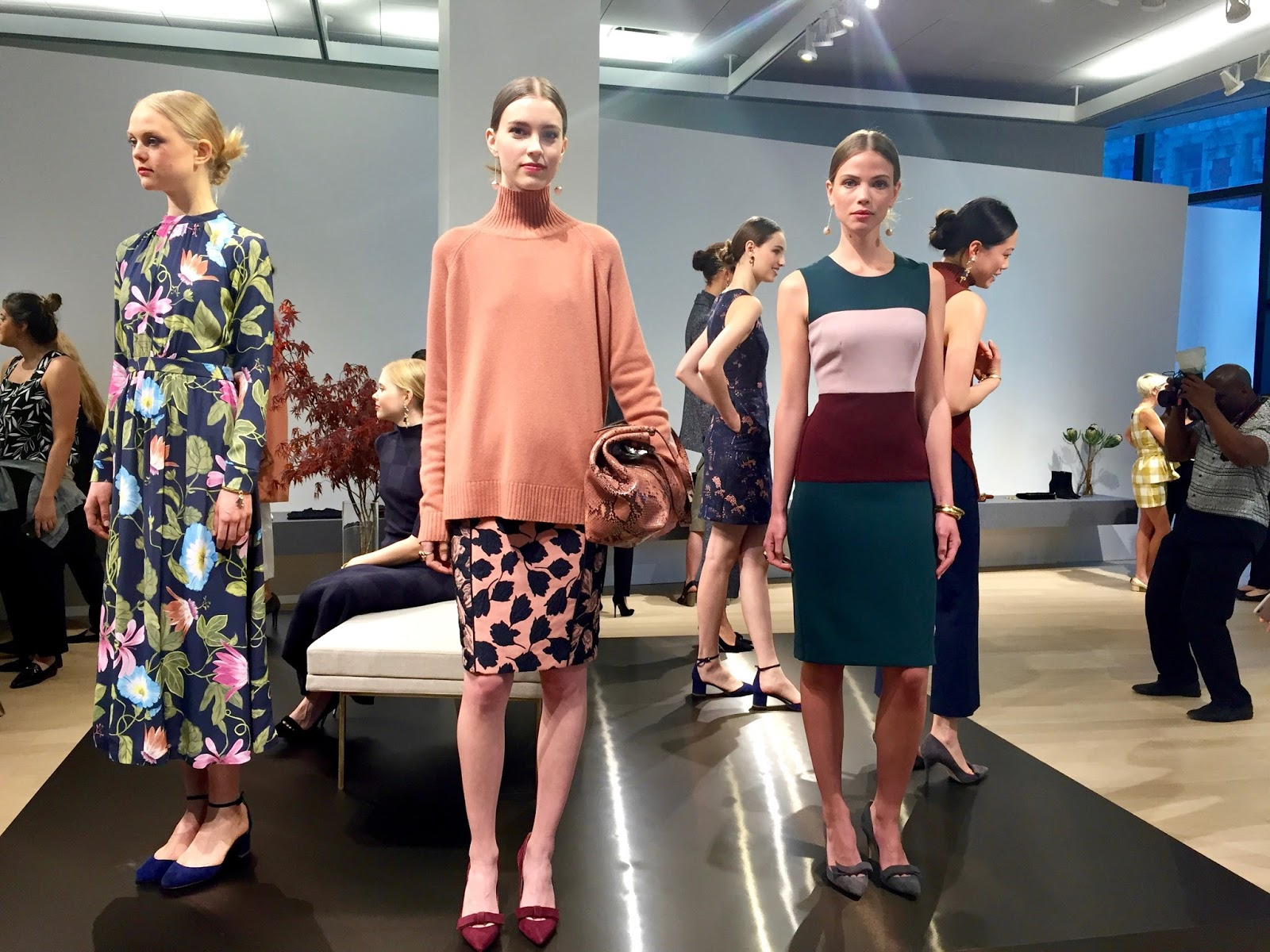 ann taylor fall collection 2016