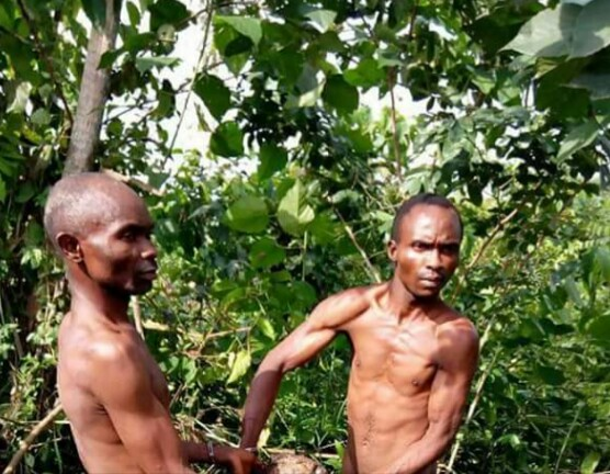 2 Men Arrested For Beheading Their Brother Over Land (Photos)