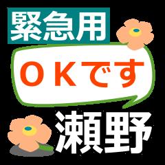 Emergency use.[seno]name Sticker