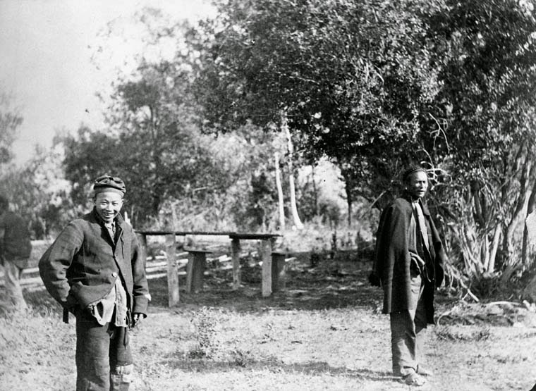 Pictures Of The Early Chinese Canadians In The Late 19th
