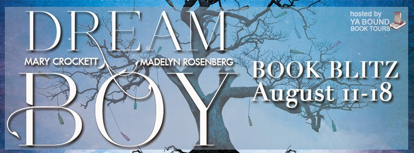 http://yaboundbooktours.blogspot.com/2014/07/blitz-sign-up-dream-boy-by-madelyn.html