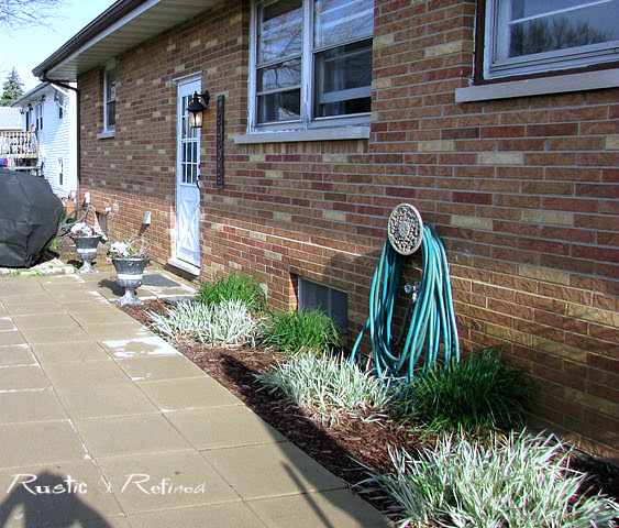 Budget gardening with low water plants